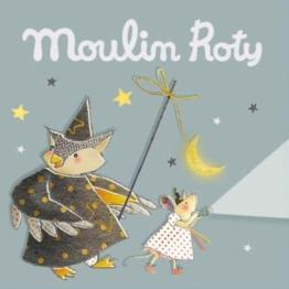 Bo_te_grise_de_3_disques_pour_lampe_histoires_Il_Etait_Une_Fois_Moulin_